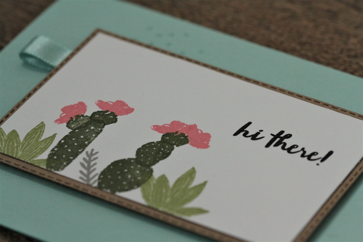 Kaktus Trend