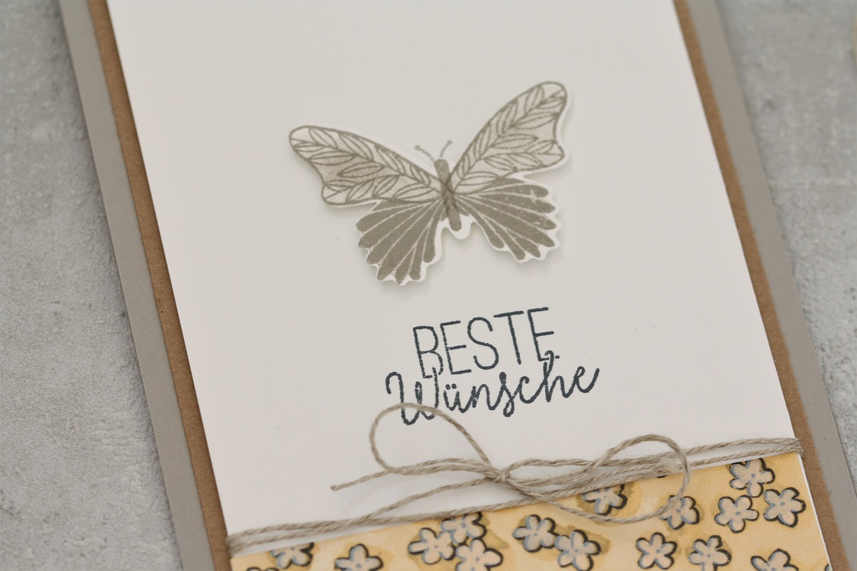 Schmetterlingsstanze ist wieder da